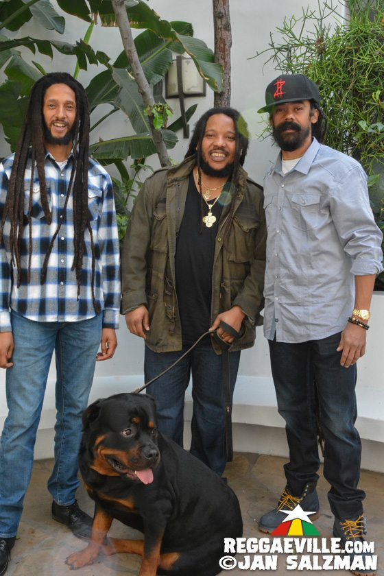 celebrity stephen marley with famous brothers and rottweiler